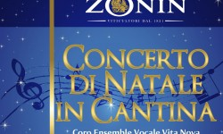 Locandina_35x50cm_Concerto_fondoblu