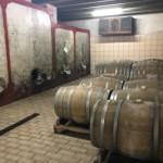 Azienda Agricola Sordato (1)